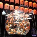 堂島リバーフォーラムのアートアクアリウムで金魚さんに会ってきました。